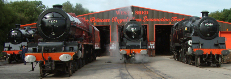 Four steam locomotives outside the West Shed.